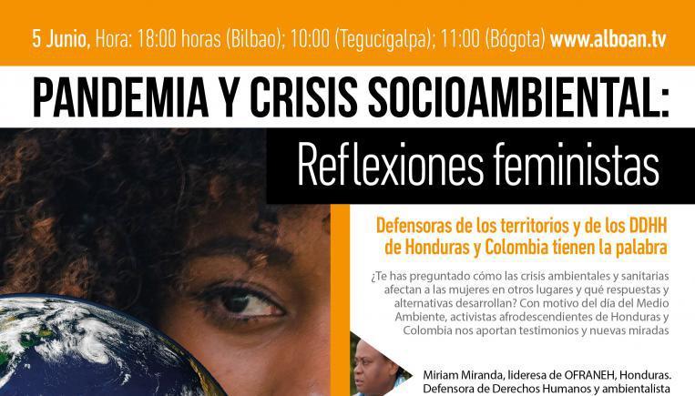 Reflexiones feministas sobre la pandemia y la crisis socioambiental