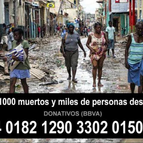 Larrialdia Haitin