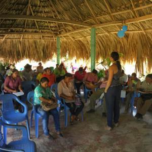 Tecnología Libre de Conflicto llega a Colombia